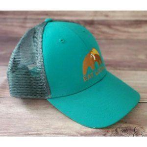 Patagonia Mens Eat Local Upstream LoPro Teal Hat